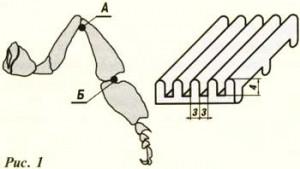 метод борьбы с клещом варроа