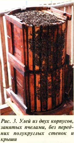 Кассетный улей - съемные полукруглые стенки