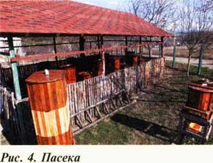 Кассетный улей - пасека