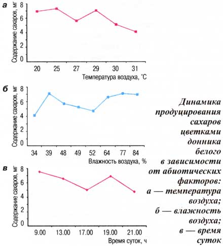 Динамика продуцирования сахаров цветками донника белого