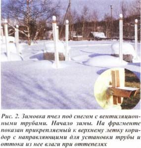 на Камчатке под снегом