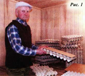 прокладки для куриных яиц