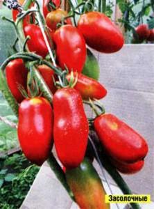 Семена крупноплодных сортов