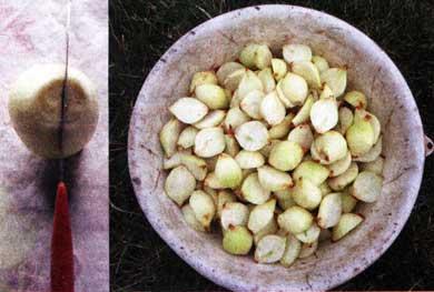разрезаем луковицу на половинки