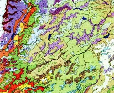 Геоботанические карты