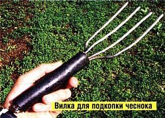 огородная вилка