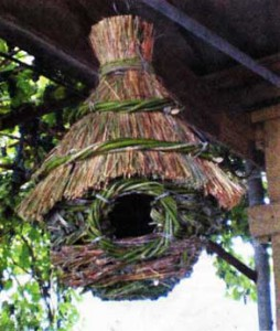 Птичий дом