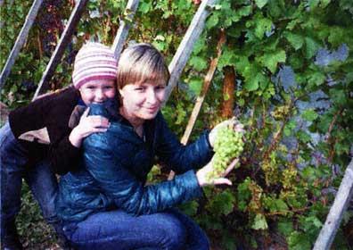посадкой винограда