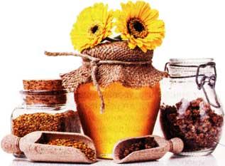 побочные продукты пчеловодства