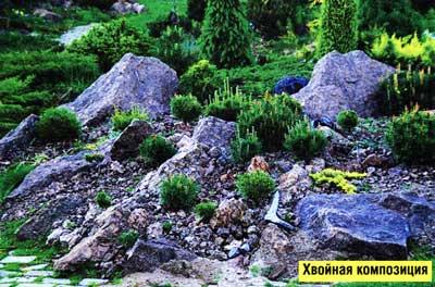 оформления каменистых садов