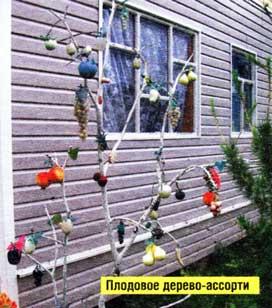 Около дома дерево