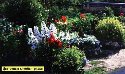 Обилием цветов