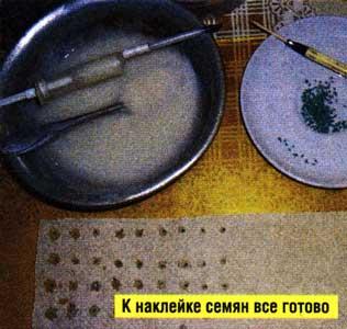 О наклейке семян на бумагу