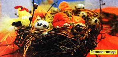 готовое гнездо