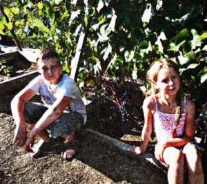 красноярских виноградарей