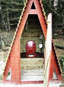 туалетной ямки