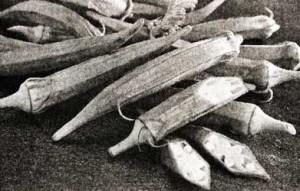 Блюда из бамии