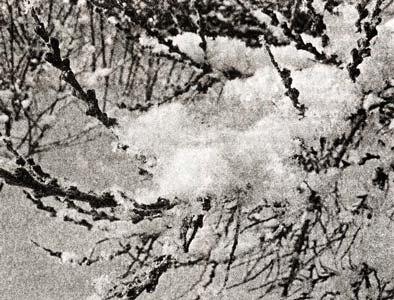 Солнце на лето - зима на мороз