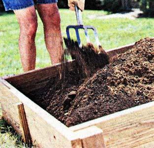 подкармливаете огородные растения