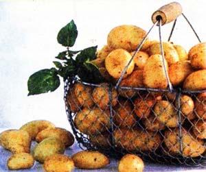 обрезать цветки на картофеле