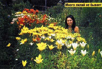 украсить цветами