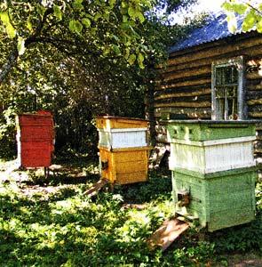 пчеловодов к ответственности