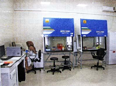 клинико-диагностическую лабораторию