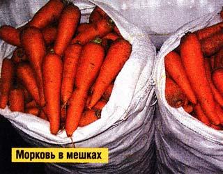 хранения моркови