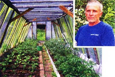 занялся сельским хозяйством