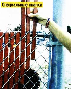 сетчатом заборе