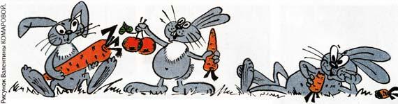 меню кроликов
