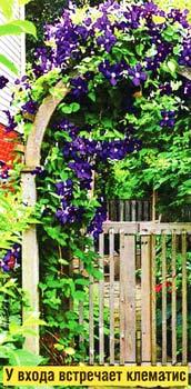 цветочными арками