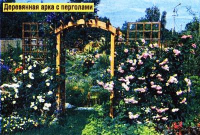 Деревянные арки и перголы