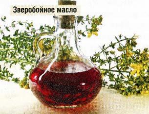 зверобойное масло