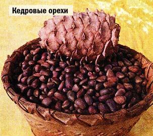 кедровых орехов